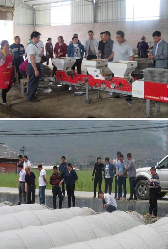 松桃县技术人员赴秀山县取经水稻钵苗机插育秧技术
